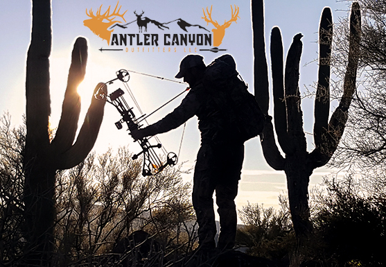 Arizona Archery Deer Hunt