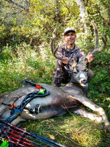 Free Hunt Winner