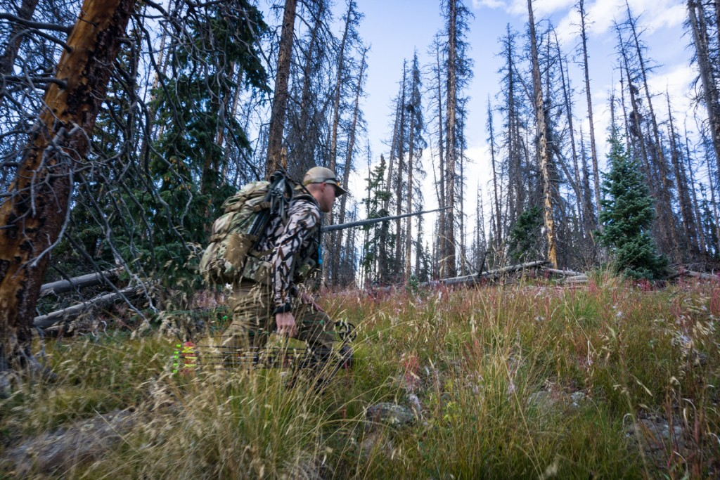 Archery Elk Hunt