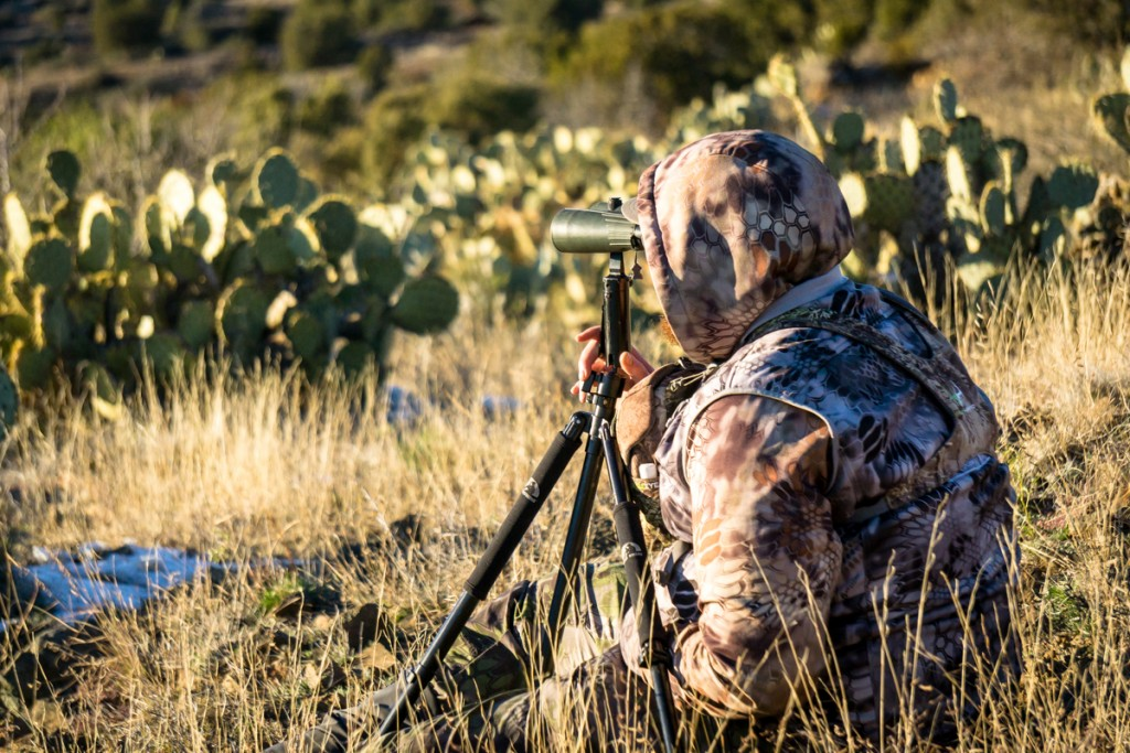 Arizona Coues Deer Hunt